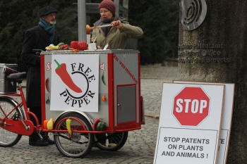 No-Patent-on-Pepper-EPO-Feb-2014