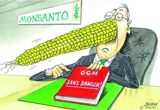dessin Burki Monsanto