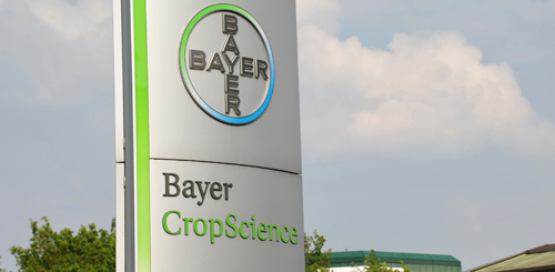 191225 News Bayer